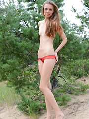 Delicious teen beauty undressing and spreading her long shapely legs outdoors on the sand.